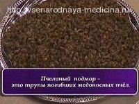 Лечение щитовидной железы пчелиным подмором