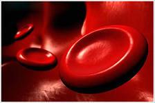 Как поднять гемоглобин народными средствами