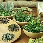 Очищение организма травами