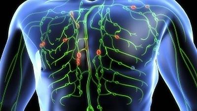 Народные средства для лимфатической системы