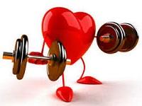 Как укрепить мышцы сердца