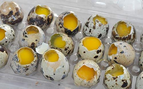 Можно ли есть перепелиные яйца натощак
