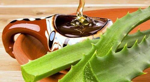 Лечение алоэ с медом